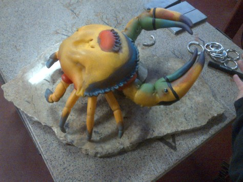 Making a Stand for Toucan-Crab