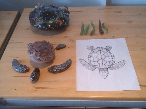 Working on a sea turtle!